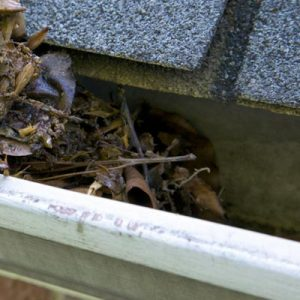 gutter cleaning Fife